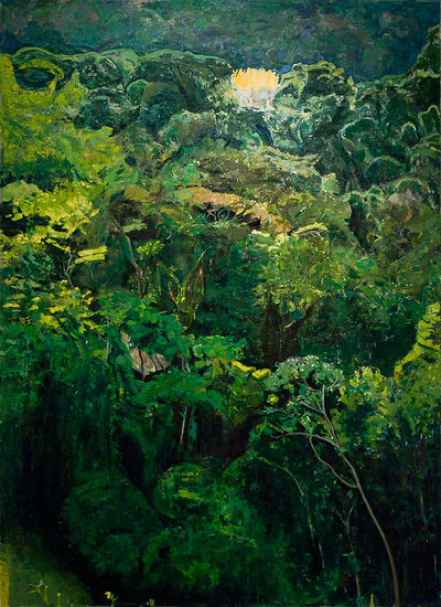 Viidakko / Jungle