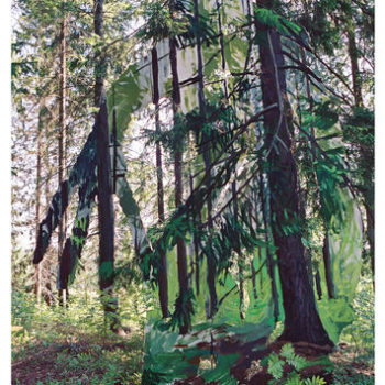 Name of the work: Metsä 2003
