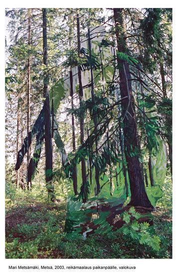 Metsä 2003