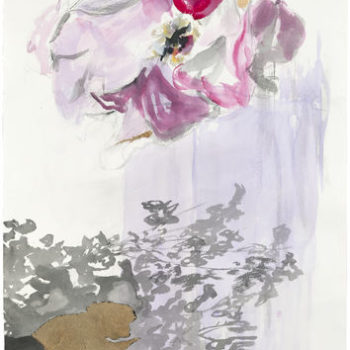 Name of the work: Rosa robusta II, 2011