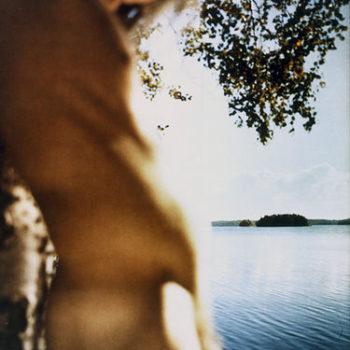 Teoksen nimi: Miehen tuoksu # 15, 2006