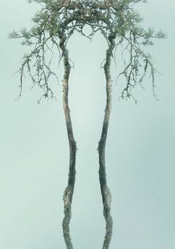 Teoksen nimi: Diorama: Japonisme I