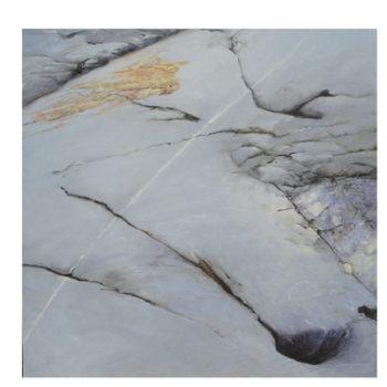 Teoksen nimi: Larus ridibundus,2007