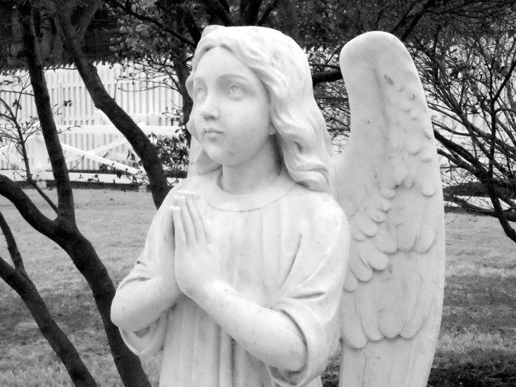 Elvis' Angel