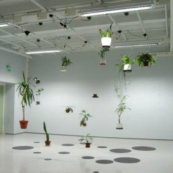Teoksen nimi: Huonekasvien retkipäivä, 2010