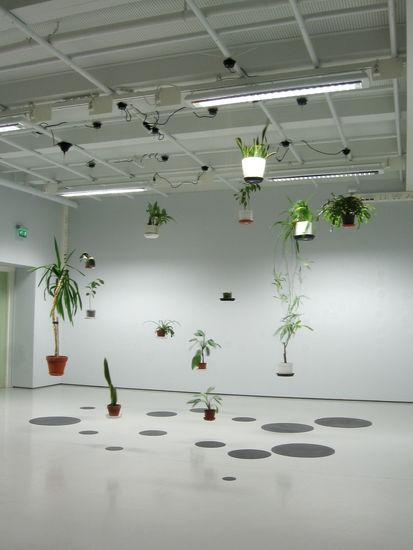 Huonekasvien retkipäivä, 2010
