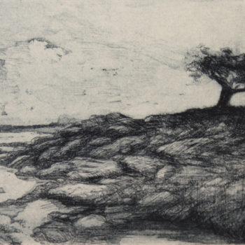 Teoksen nimi: Puu meren rannalla