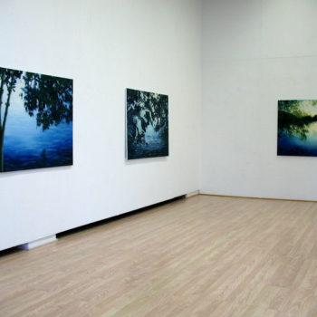 Teoksen nimi: yleiskuva Galleria Johan S, 2007