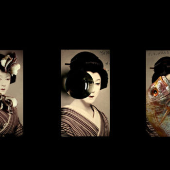 Name of the work: The Collection of Madama Butterfly, 3 x details 2016