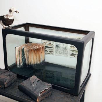 Teoksen nimi: Oppitunteja vedestä, 2012, installaatio
