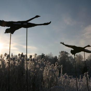 Teoksen nimi: Tuusulanjärven linnut