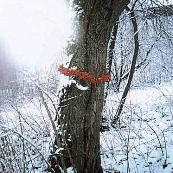 """Teoksen nimi: """"Polku"""", Helsinki Pitäjänmäki 1998"""