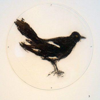 Teoksen nimi: Musta lintu ja kupit -öljymaalaussarja pleksille, 2015-2016 (13 osaa)