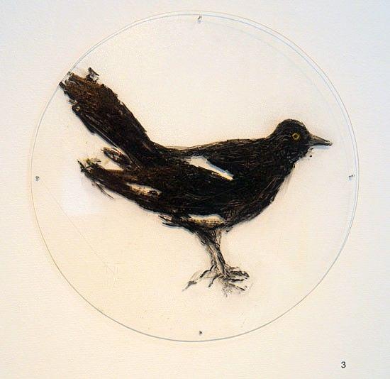Musta lintu ja kupit -öljymaalaussarja pleksille, 2015-2016 (13 osaa)