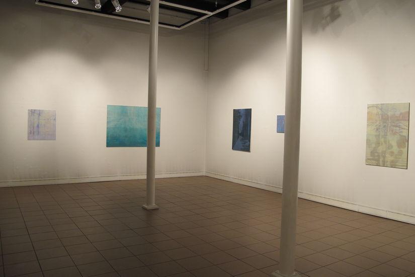Ripustuskuva Poriginal galleria 2013
