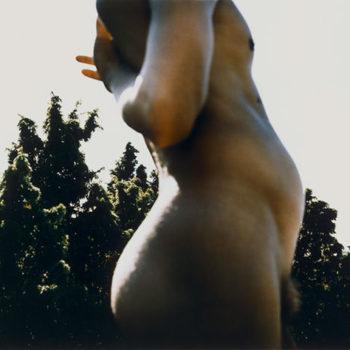 Teoksen nimi: Sankarin paluu # 4, 2004