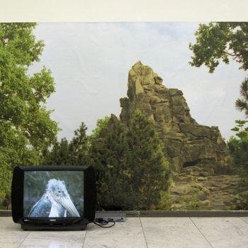 Teoksen nimi: WESTERN   video, mustesuihkutuloste (2009)