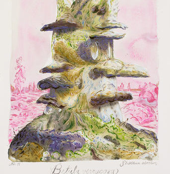 Teoksen nimi: Stubbhuvu Arboretum #11