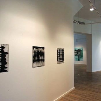 Teoksen nimi: Galleria Maaret Finnberg yleiskuva yksityisnäyttelystä 2010 / öljy alumiinille