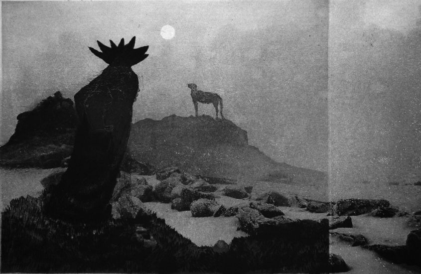 Kalpea kuu / Pale moon
