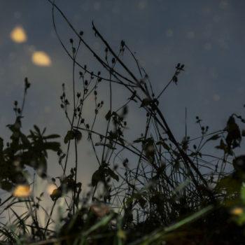 Teoksen nimi: Glow I, 2012