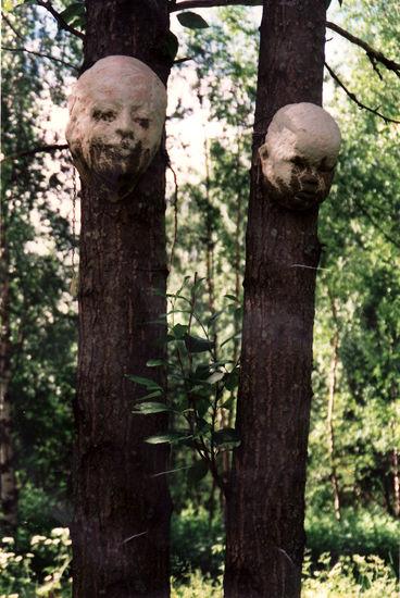 Puun henki / The spirit of the tree