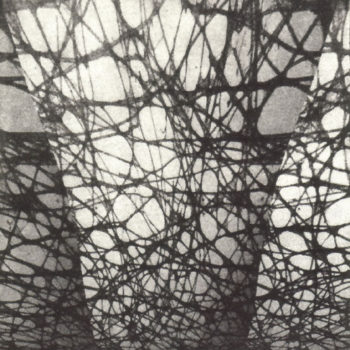 "Teoksen nimi: ""Surrounding Net"", 2007"
