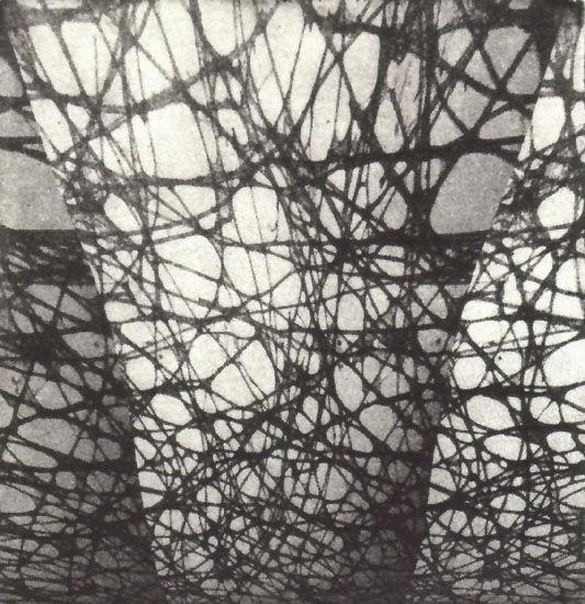 """""""Surrounding Net"""", 2007"""