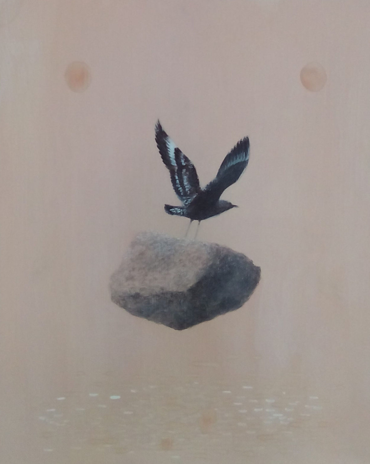 Merkillisen vahva lintu