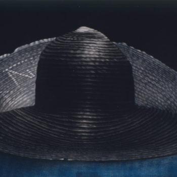 Teoksen nimi: Käärmeenlumoojan hattu / Snake Charmer's Hat