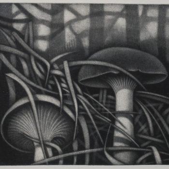 Teoksen nimi: Sateinen metsä / Rainy Forest