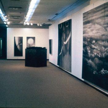Teoksen nimi: Näyttely Kuopion taidemuseossa vuonna 1986