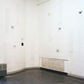 Teoksen nimi: Perhos-installaatio 1995