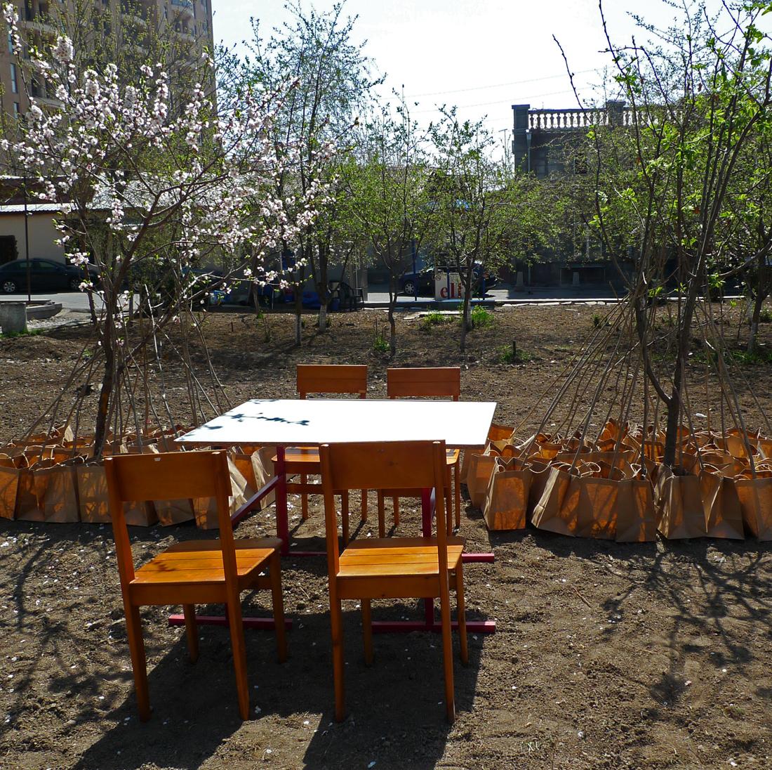 Plants for Free, Yerevan