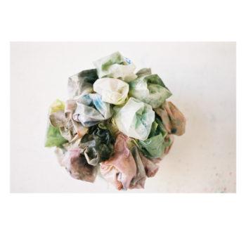 Teoksen nimi: Kukkia paronitar Foscalle