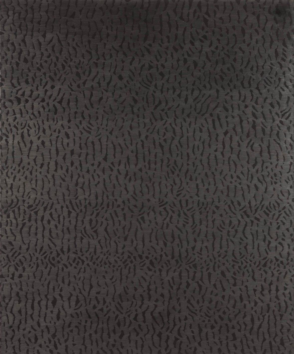 Pimeän pinta/Surface of dark, kuva Timo Laitala