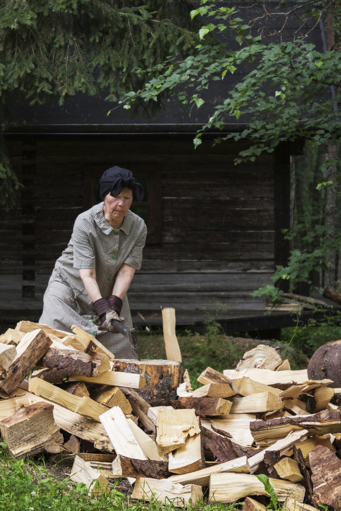 Halkosavotta  /  Firewood