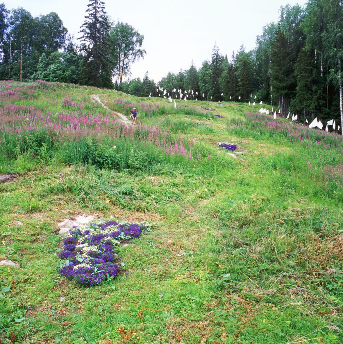 UKKO-KOLIN JÄLJILLÄ, 2000