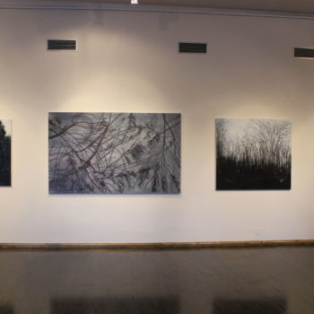 Teoksen nimi: Ripustuskuva Jostain kotoisin, etappi8, Mikkelin taidemuseo 2017