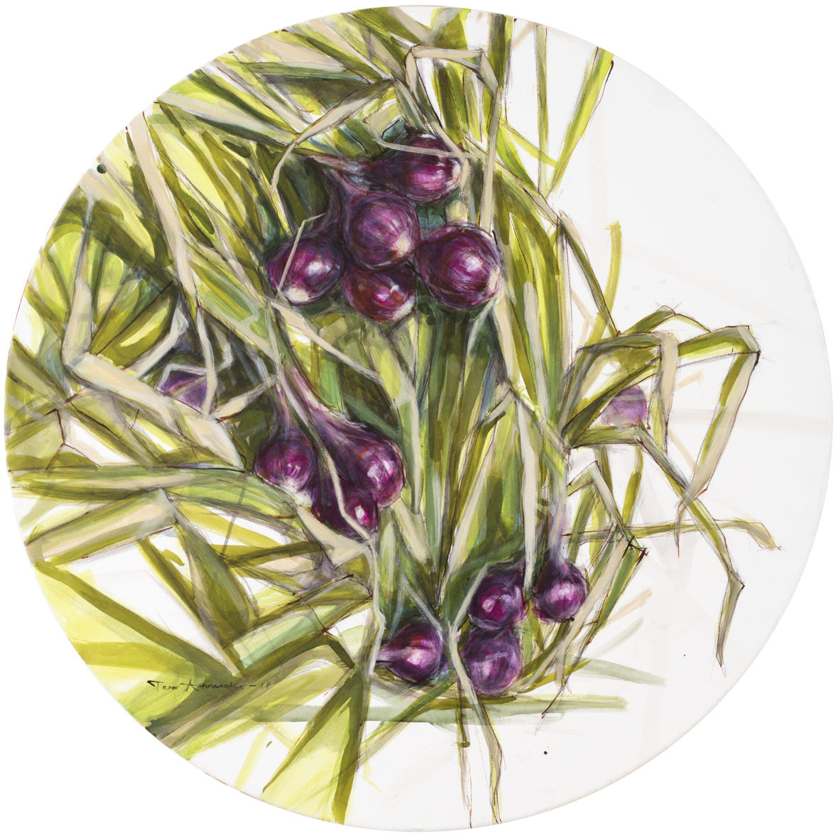 Punasipulit / Red onion