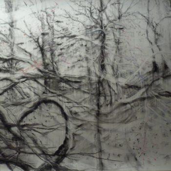 Teoksen nimi: Puiden laulu / L'air des arbres, lyijykynä, hiili, värikynä paperille 110cm x 150cm, 2018