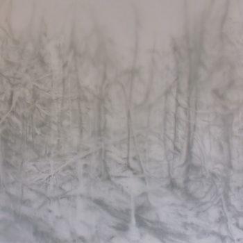 Teoksen nimi: Tuntemattomat metsät (hän kävi täällä)/Unknown Woods (She was here)
