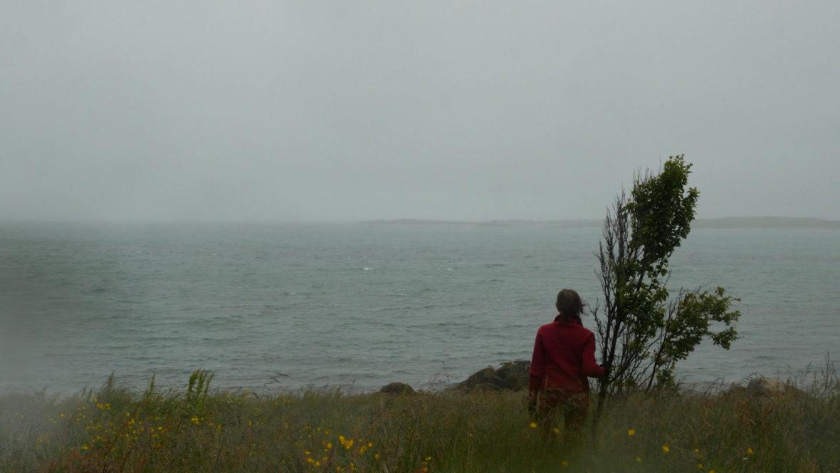 Rainy Day in Rekdal – Grey Day in Rekdal