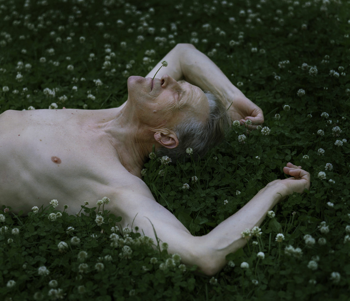 Apilataivas, 2008 / Bed of clovers, 2008