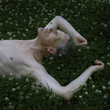 Teoksen nimi: Apilataivas, 2008 / Bed of clovers, 2008