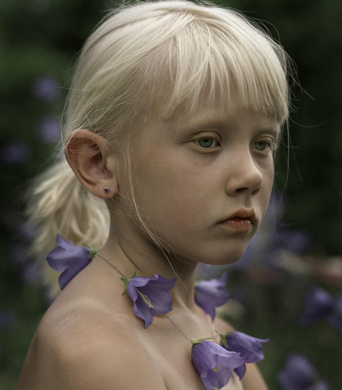 Siniset kellokukat, 2006 / Blue bellflowers, 2006