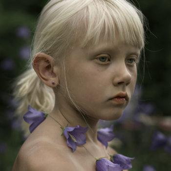 Teoksen nimi: Siniset kellokukat, 2006 / Blue bellflowers, 2006