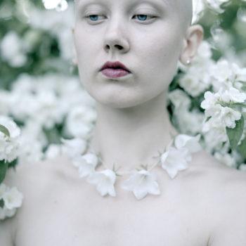 Teoksen nimi: Valkoiset kellokukat, 2019 / White bellflowers, 2019