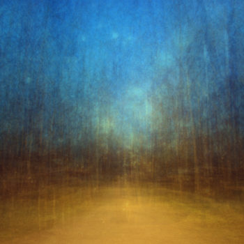 Name of the work: Path (artificial light) 3