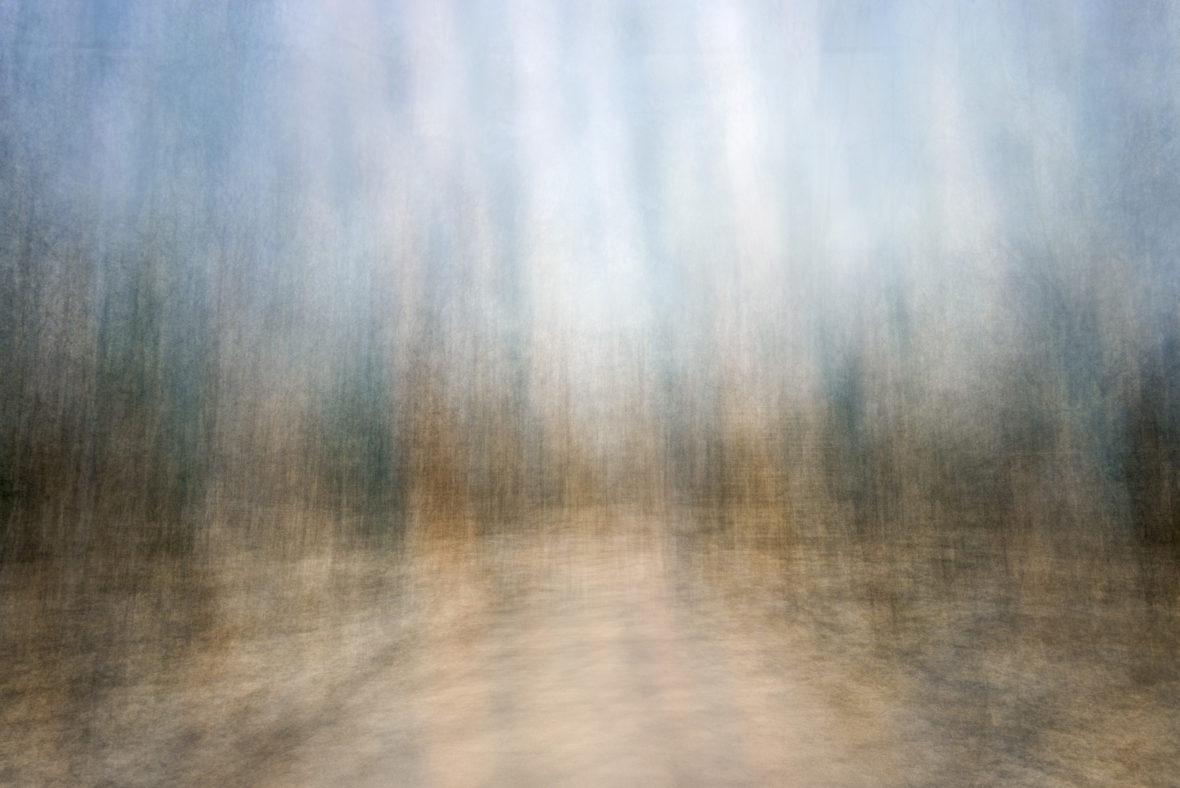 Path (seasons) Spring 4